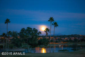 14415 E Prairie Dog Trail #5, Fountain Hills, Arizona image 12