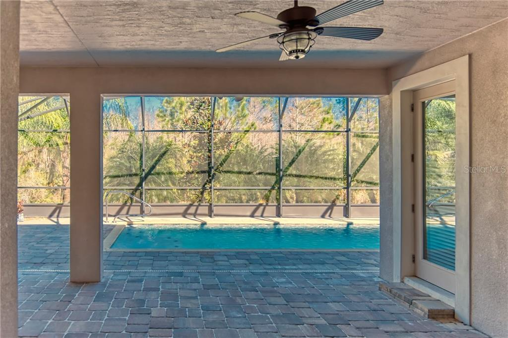 YOUR oasis - a large covered lanai opens out to the screened cage and GORGEOUS INGROUND!