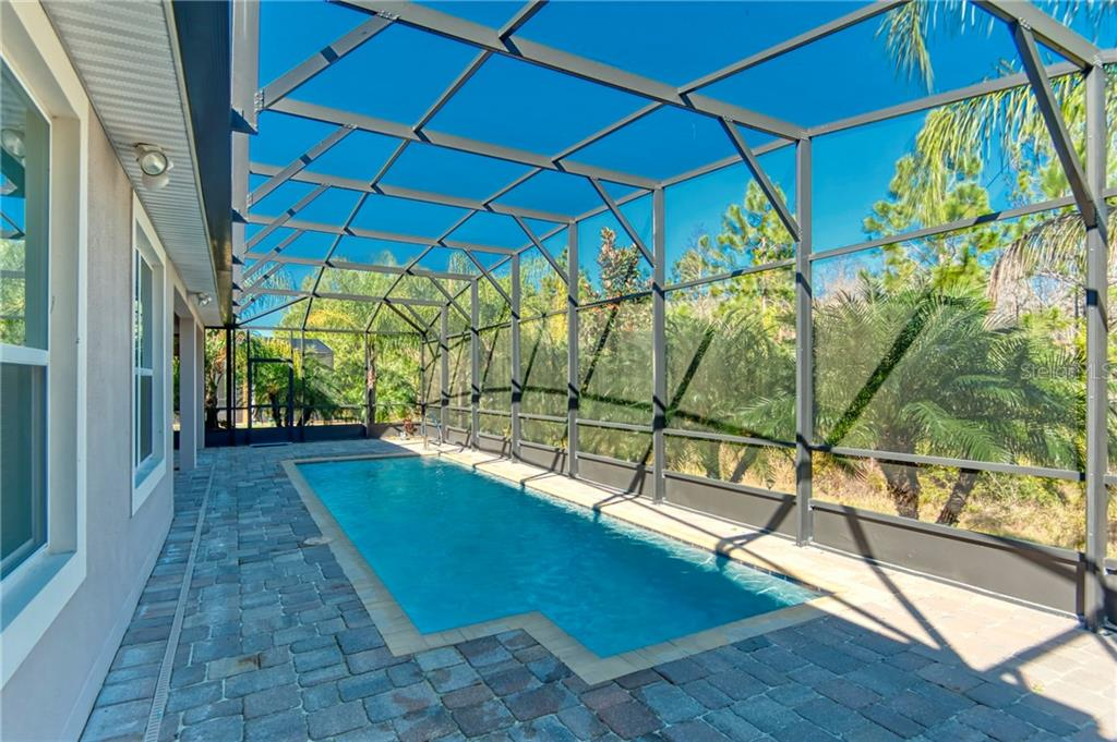 Pool, lanai cage, and CHECK out the EXTENSIVE LANDSCAPING!