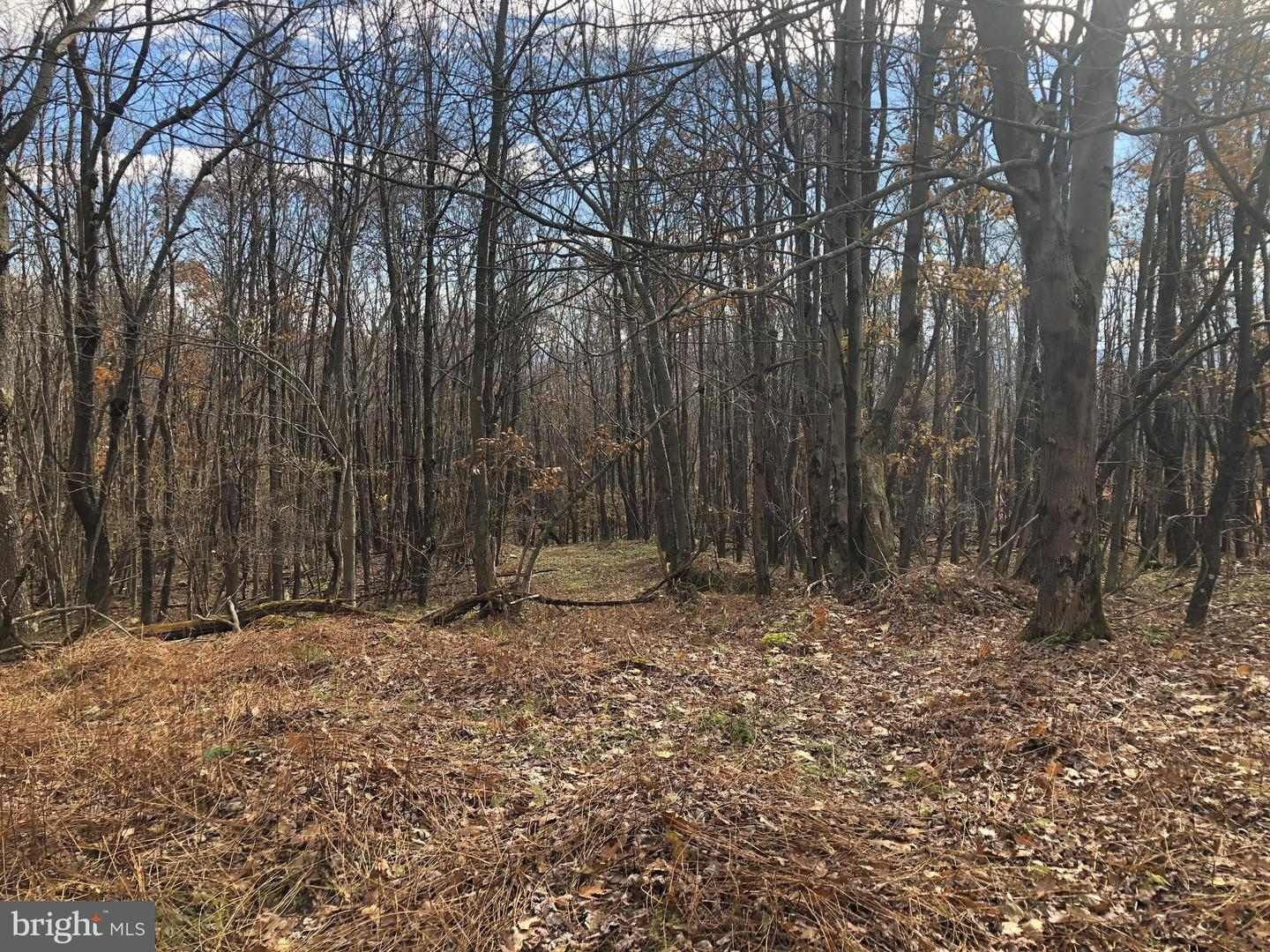 Lot 164 Shawnee View Road  , CENTRAL CITY, Pennsylvania image 1