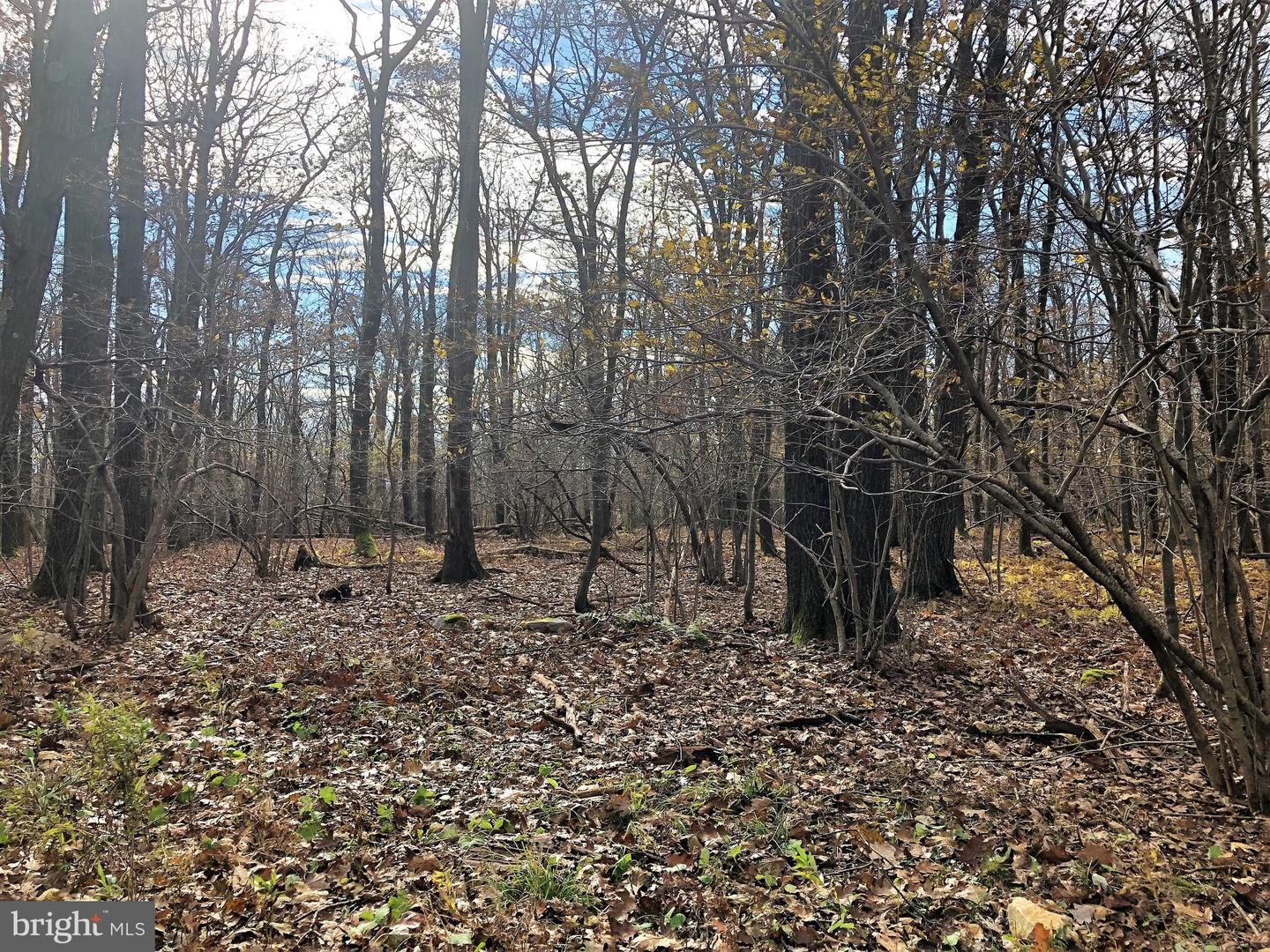 Lot 164 Shawnee View Road  , CENTRAL CITY, Pennsylvania image 11