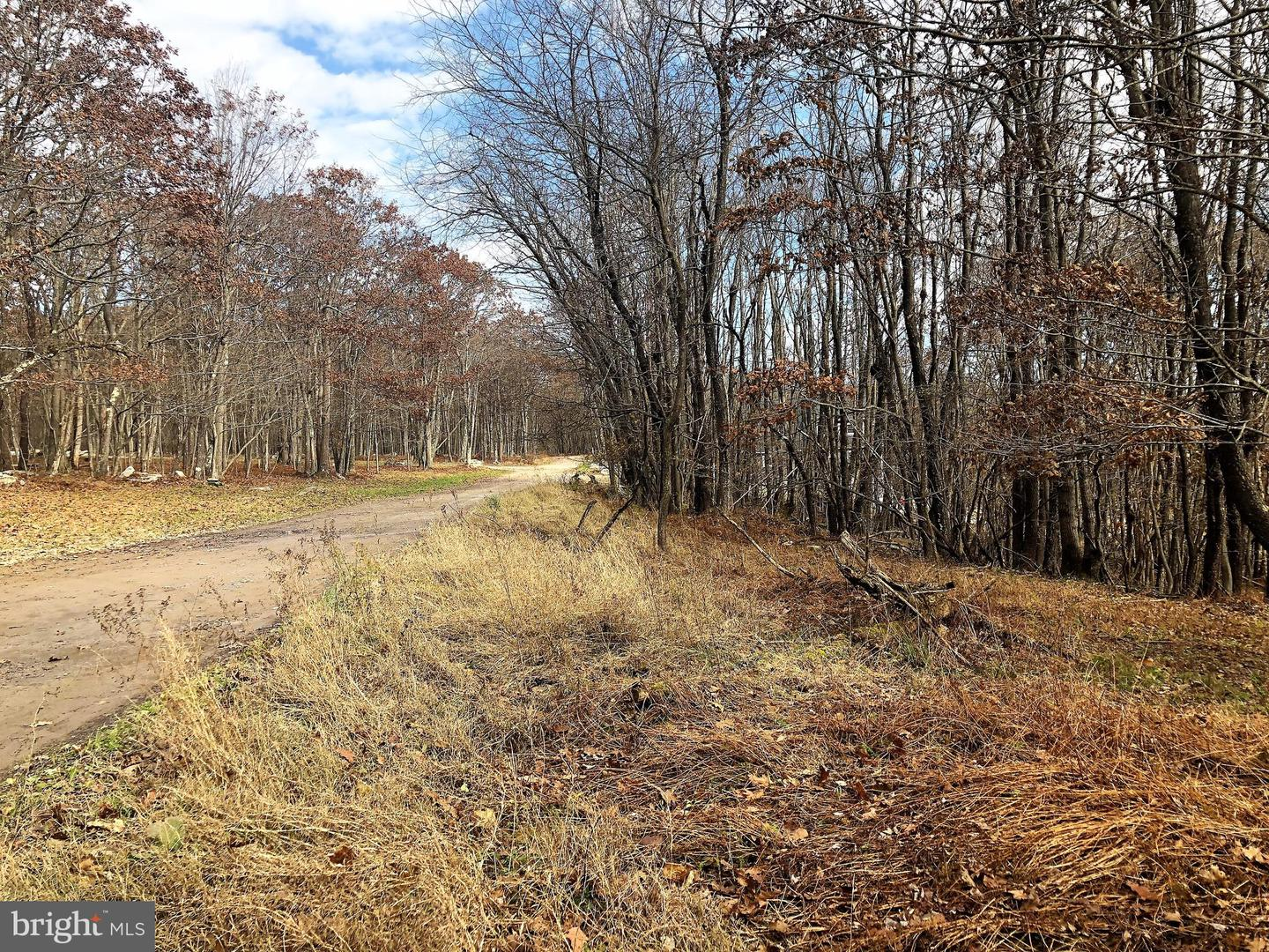 Lot 164 Shawnee View Road  , CENTRAL CITY, Pennsylvania image 5