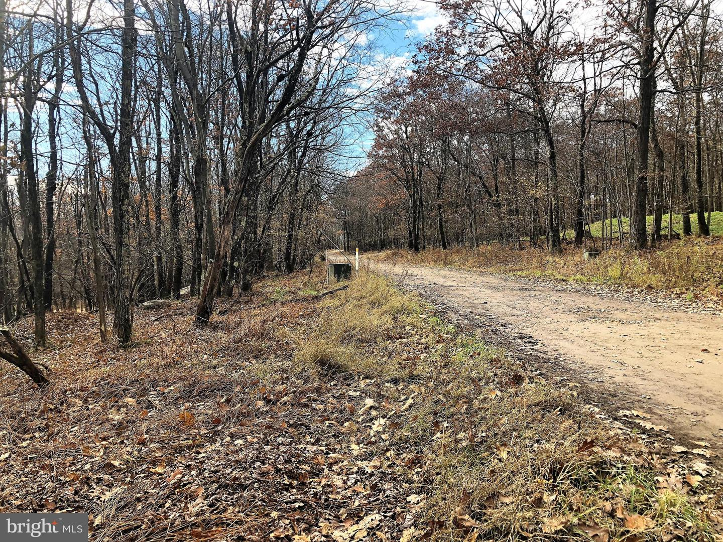 Lot 164 Shawnee View Road  , CENTRAL CITY, Pennsylvania image 6