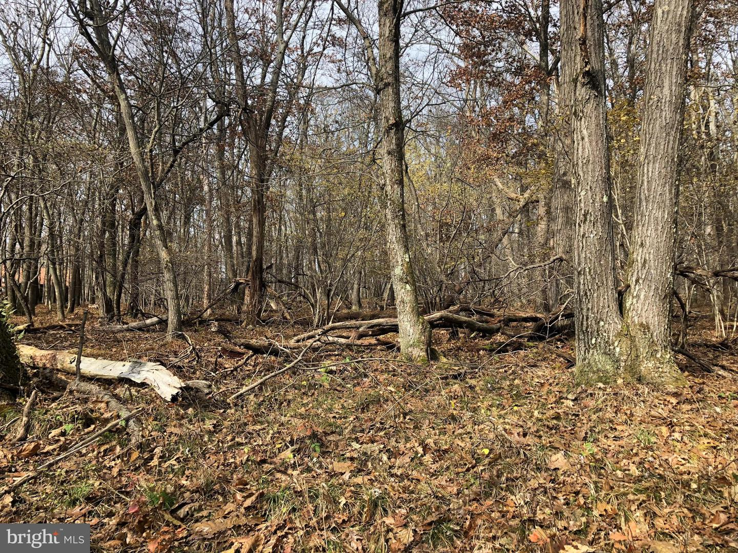 Lot 164 Shawnee View Road  , CENTRAL CITY, Pennsylvania image 9