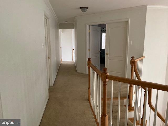 427 W Country Club Drive , MOUNT HOLLY, New Jersey image 10